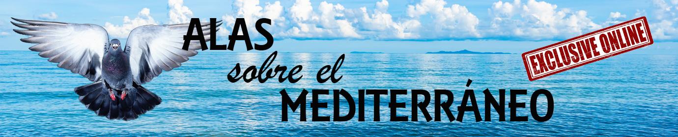 Alas sobre el Mediterraneo